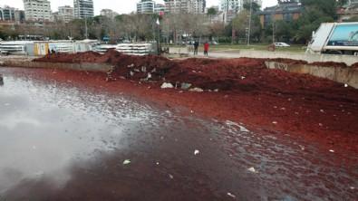Caddebostan Sahili kırmızıya boyandı!
