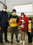 Ergene'deki Sevimli Dostları Belediye Sahiplendirmeye Devam Ediyor