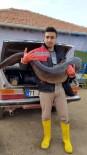 Hirfanlı Barajında 25 Kiloluk Sazan Balığı Yakalandı