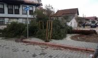 Sakarya'da Şiddetli Rüzgar Ağacı Devirdi, Faciadan Dönüldü