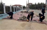 Karaman Belediyesi Koruluğa Otopark Yapıyor
