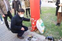 Kozan'da Sokak Hayvanlarına Su Ve Mama Desteği