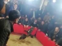 Şanlıurfa'da Horoz Dövüştürenlere Operasyon