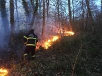 Anız Ateşi Yangına Davetiye Çıkarıyor