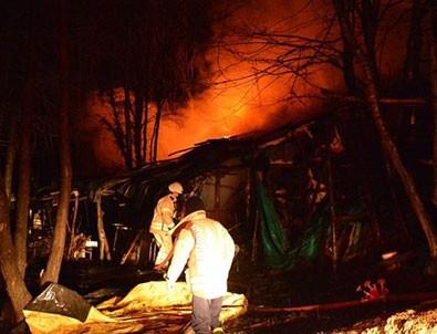 Beykoz Tabiat Parkı'nda yangın!