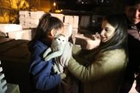 Mermer Paletlerin Arasına Sıkışan Kediyi İtfaiye Ekipleri Kurtardı