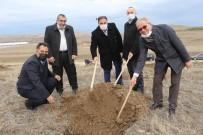Sungurlu'da Bin 500 Fidan Toprakla Buluştu
