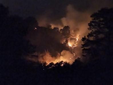 Trabzon'un Of İlçesinde Örtü Yangınları
