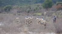 Çanakkale'de Komanda Ekipleri De Arama Çalışmalarına Katıldı