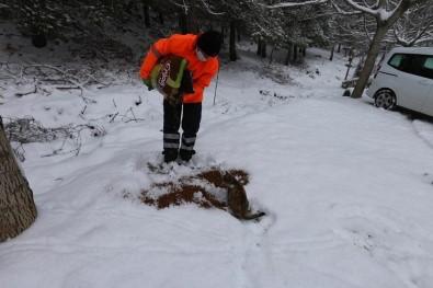 Efeler Belediyesi Kar Mesaisi Yaptı