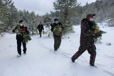 Jandarma Ve Avcılar, Yaban Hayvanlarına Yiyecek Bıraktı