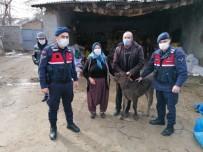JASAT Hayvan Hırsızlarını Gürcistan'a Kaçarken Yakaladı