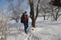 Soğuk Havada Kırağı Kartpostallık Görüntüler Oluşturdu