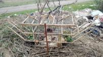 Tuzak Kurarak Saka Kuşu Avlayan İki Kişi Yakalandı