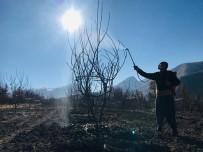 Uludere'de Çiftçiye Bordo Bulamacı Eğitimi
