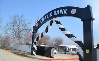 Yeni 'Çiftlik Bank' skandalı: Onlarca kişi parasının peşine düştü...