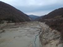 Sinop'un İçme Suyu Barajında Korkutan Görüntü