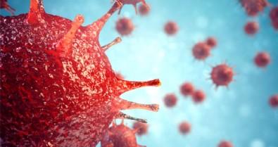Türkiye'de 9 Ocak koronavirüs tablosu!