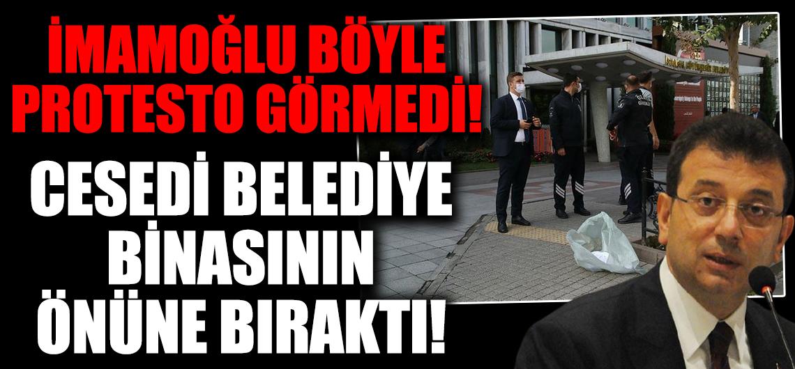 İmamoğlu böyle protesto görmedi! İBB tarafından kısırlaştırılan sokak köpeği öldü cesedini beze sarıp belediye binasının önüne bıraktı!