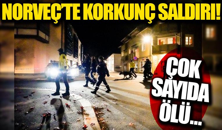 Norveç'te oklu saldırı! Çok sayıda ölü var!
