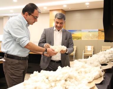 Diyarbakir Ticaret Borsasi'nda Online Pamuk Alim Satimi