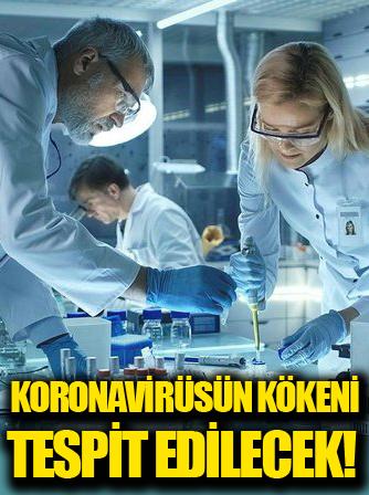 Koronavirüsün kökeni için yeni ekip kuruldu