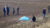Kazada Ölen Kizinin Basindan Ayrilmadi