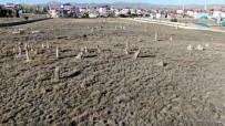 5 Asirlik Mezar, Insan Boyunu Asan Taslari Ile Dikkat Çekiyor
