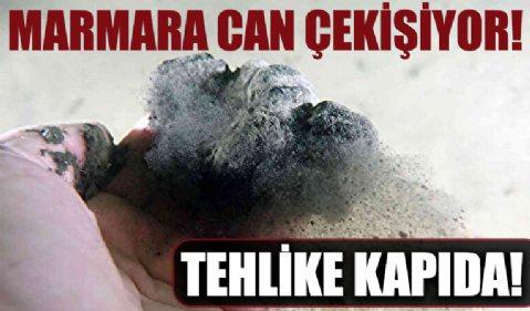 Marmara soğuyamıyor: Müsilaj tehlikesi kapıda
