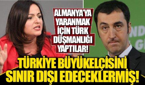 Cem Özdemir ve Sevim Dağdelen'den 10 büyükelçi kararına tepki