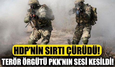 Bölücü terör örgütü PKK'nın sesi kesildi! İnlerinden kafalarını çıkaramıyorlar