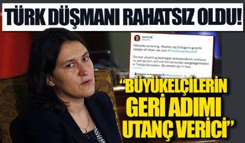 Büyükelçilerin geri adımı Türk düşmanı Kati Piri'yi rahatsız etti