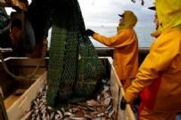 Fransız balıkçılar, İngiltere'yi Noel tedarikini kesmekle tehdit etti