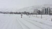 Bingöl Karlıova'da Bahar Havası Yerini Kar Yağışına Bıraktı