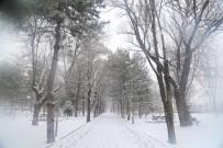 Kayseri'de 180 Mahalle Yolu Ulaşıma Açıldı