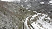 Ağaç Tünelde Kar Manzaraları Drone İle Görüntülendi