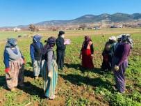 Jandarma 123 Kadına 'KADES' Uygulamasını Anlattı