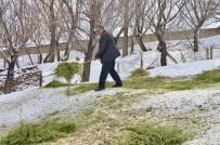 Ağrı'da Hayata Geçirilen '5 Yılda 750 Bin Koyun' Projesi Meyvelerini Vermeye Başladı