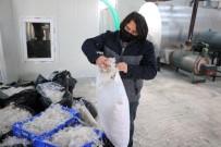 Yozgat'ta Üretilen Kaz Tüyü Avrupa'ya İhraç Ediliyor
