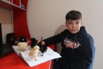 11 Yaşındaki Yusuf Kendi Yaptığı Kuluçkayla Civciv Üretiyor