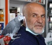 Papağan Paşa, 500 Kelime Konuşuyor Ve Dua Okuyor