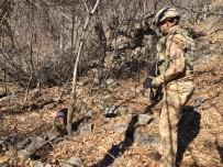Tunceli'de Eren-7 Mercan-Munzur Operasyonunda 2 Sığınak İmha Edildi