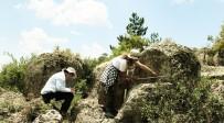 Eskişehir'de Bulunan 'İdol' Şeklindeki Stel Heyecan Uyandırdı