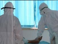 BREZILYA - Mutasyonlu virüs 23 ile sıçradı!
