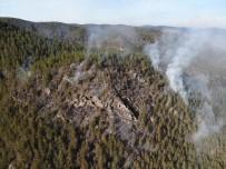 Taşköprü Ve Boyabat Sınırında 2 Ayrı Orman Yangını