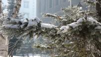 Ardahan'da Kartpostallık Kar Manzaraları