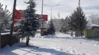 Mart Ayında Dondurucu Soğuklar Açıklaması Göle Eksi 28