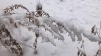 Kars'ta Yoğun Kar Yağışı