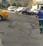 Rize'de Temizlik Görevlisi İle Süpürgesini Çalan Köpek Arasındaki Kovalamaca Cep Telefonu Kameralarına Yansıdı