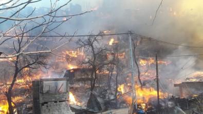 Artvin'in Yusufeli İlçesi Dereiçi Köyünde Yangın Sürüyor